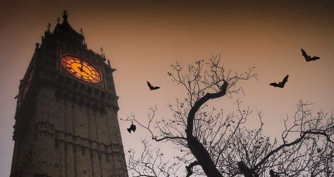 Bats in London? It Must be Halloween!